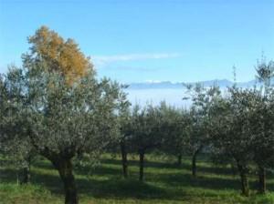 Wandeling_Bevagna-Montefalco