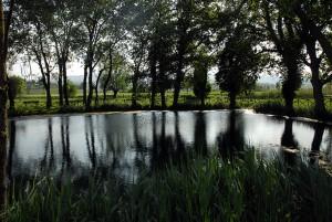 [cml_media_alt id='1192']Lago Aiso - Bevagna[/cml_media_alt]
